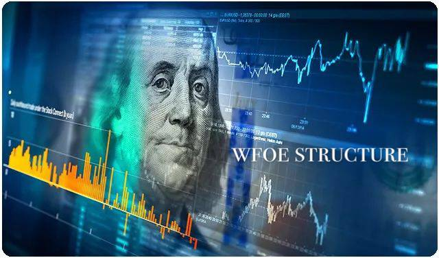 A picture about WFOE structure